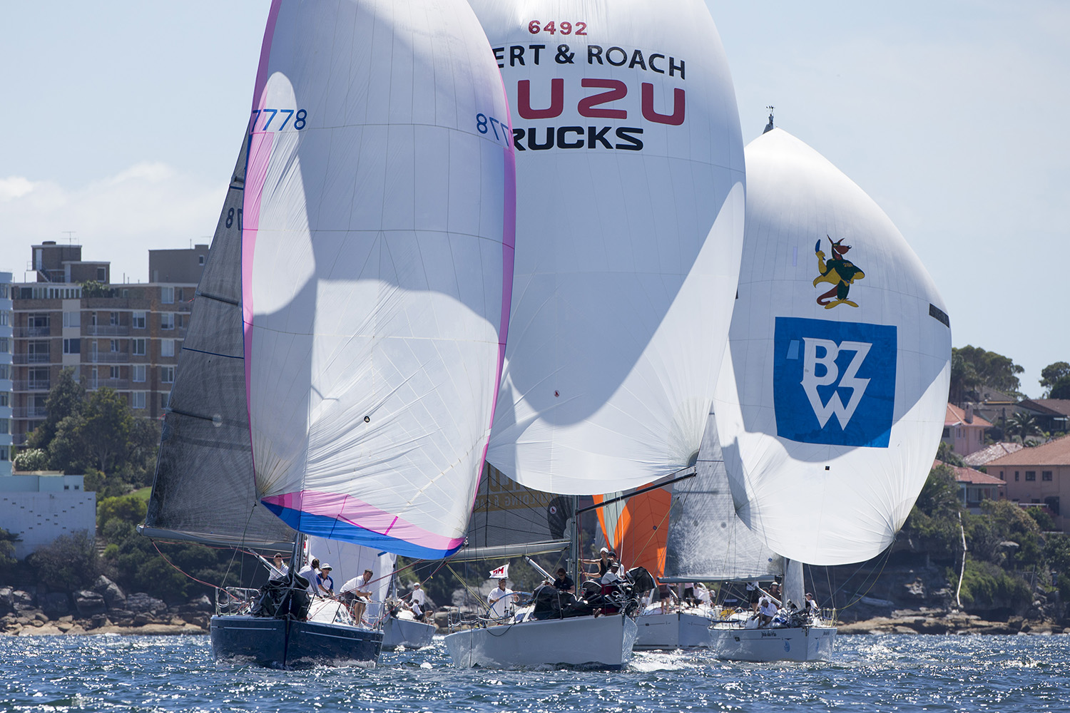 Class championships to feature at Sydney Harbour Regatta