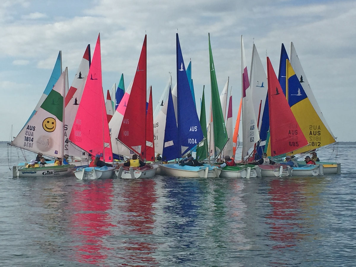 Hansa class draws fleet of 58 for Asia Pacific Champs