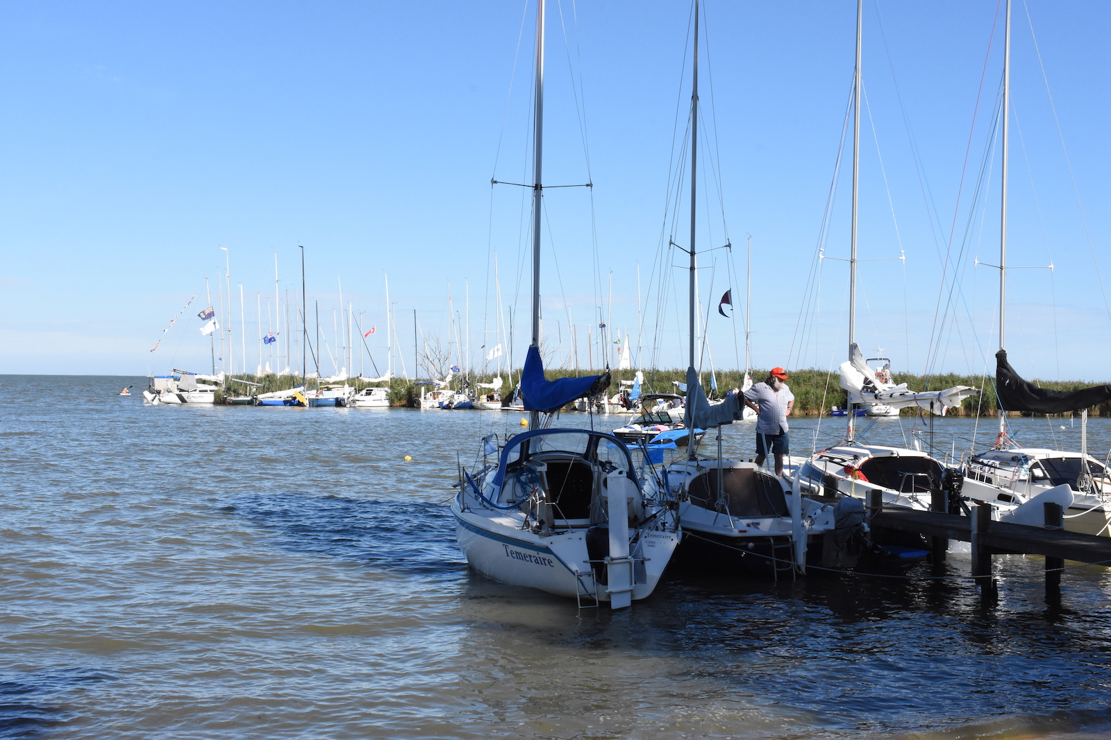 Delivery day sets the scene for the big race | Goolwa Regatta Week