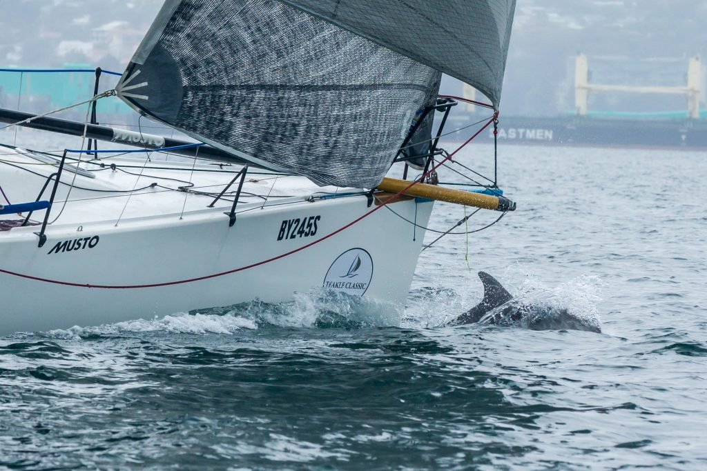Dolphins jumped up at the bow of Aikin Hames Sharley. Photos: Take 2 Photography