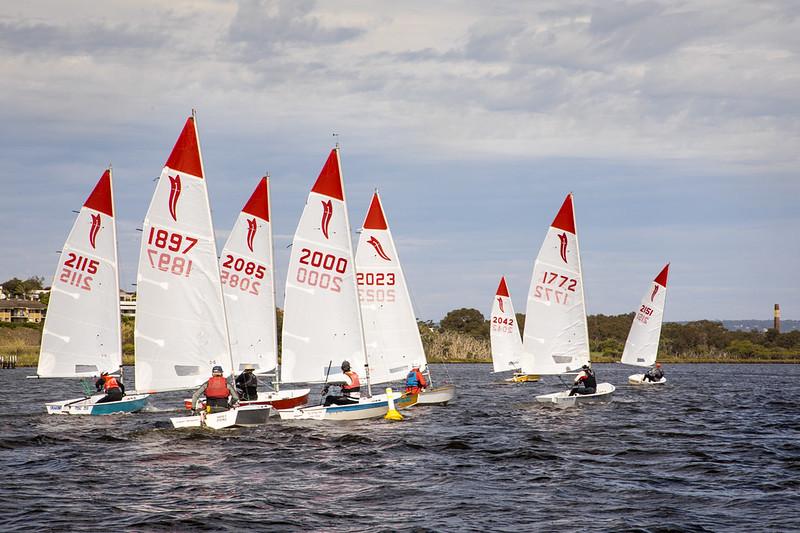 WA Sabre States kick off at Maylands Yacht Club