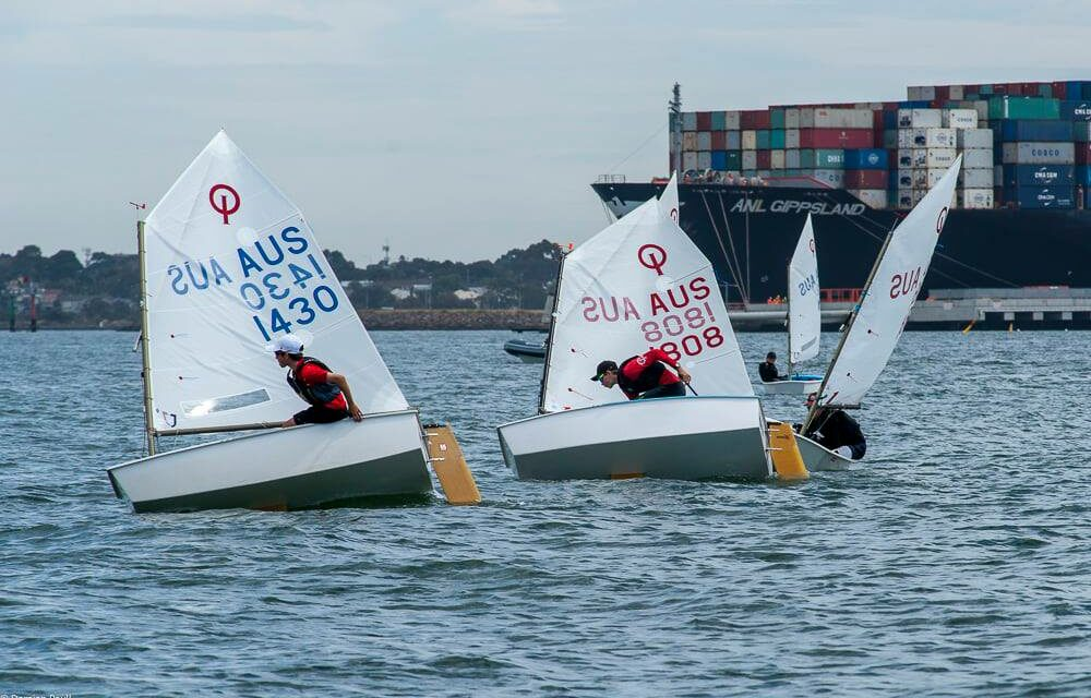 Optimist States hosted by Royal Yacht Club of Victoria a huge success